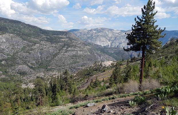Looking south into the Grand Canyon of the Tuolumne River from the Pleasant Valley trail.