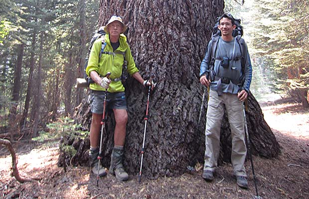 "Peter and Bill by ""Big Red"" ... a very large Red Fir on the Mono Creek Trail"