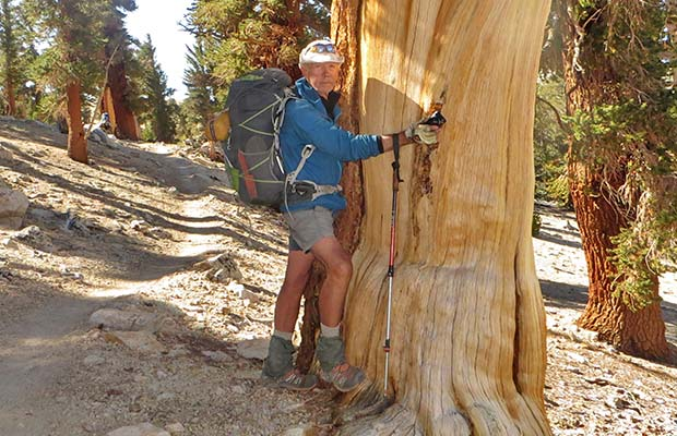 Peter tree-hugging his favorite Foxtail Pine on the Bighorn Plateau