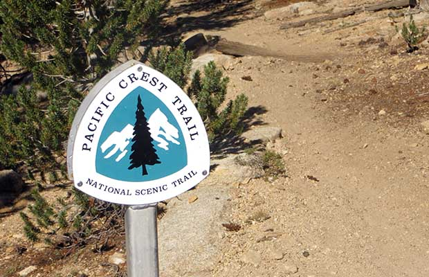 Now on the Pacific Crest Trail south of Crabtree Meadow