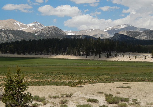 Looking north to Cirque Peak and Mt Langley from Horseshoe Meadow.