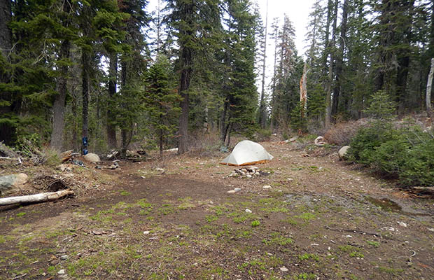 My unpleasant, damp campsite at Moosehead Creek. Few choices here.